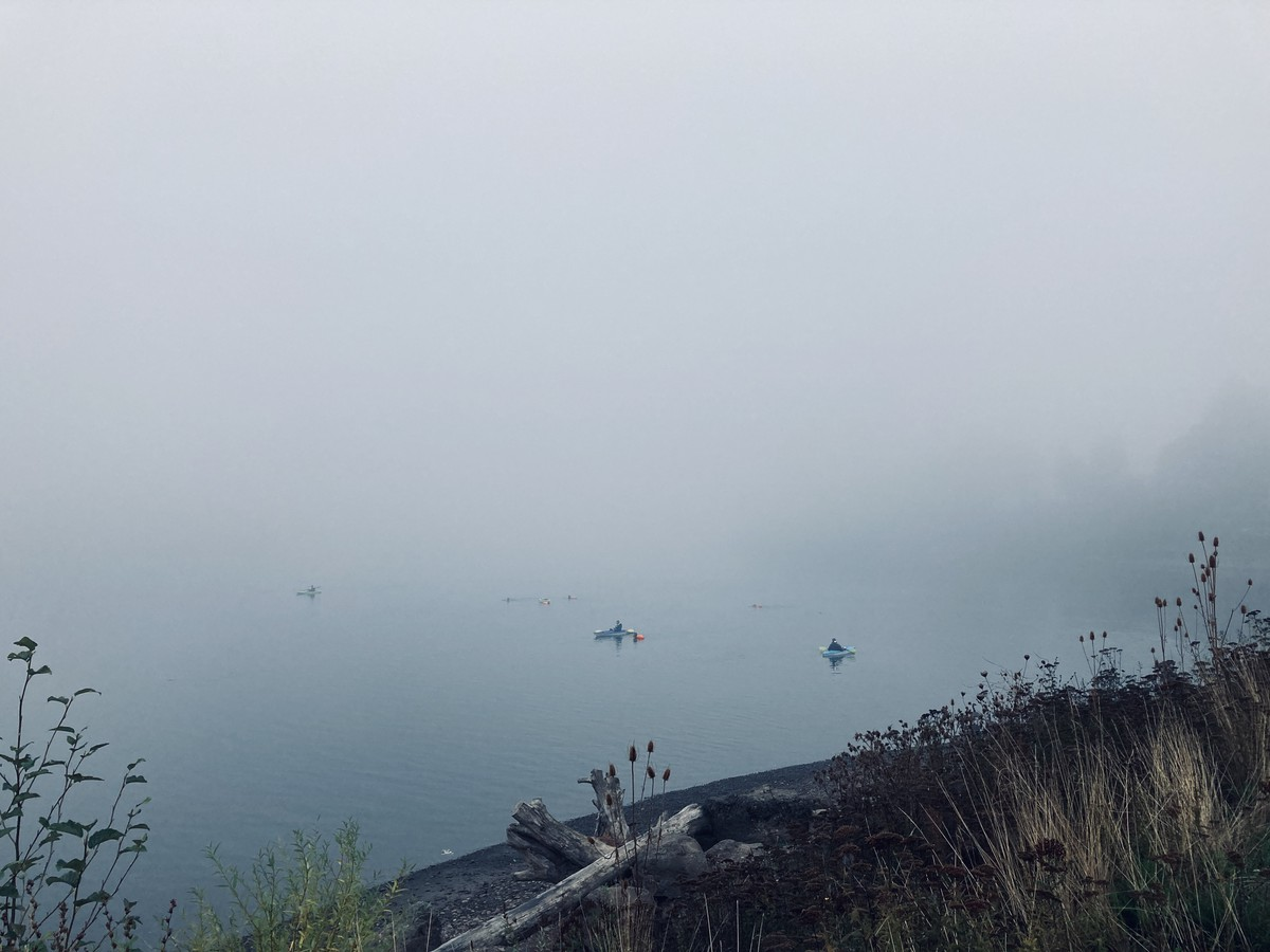 Kayakers and swimmers on the Willamette River in a heavy fog
